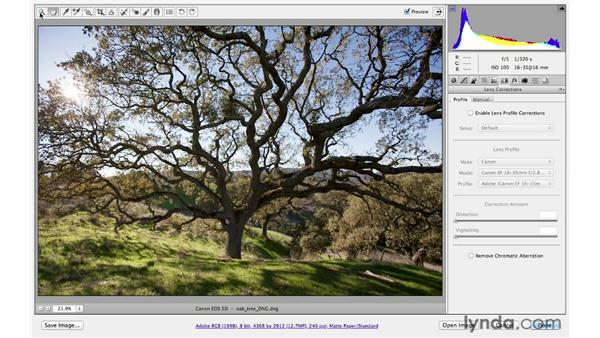 Correcting chromatic aberration and defringing: Photoshop CS6 for Photographers: Camera Raw 7