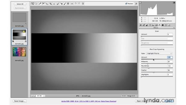 Understanding the effects controls: Photoshop CS6 for Photographers: Camera Raw 7