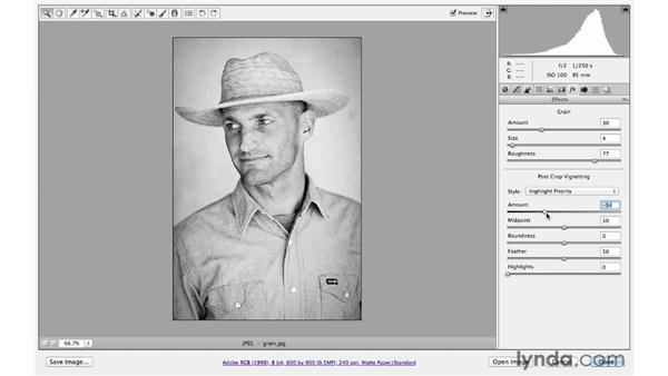 Adding film grain and darkening edges: Photoshop CS6 for Photographers: Camera Raw 7