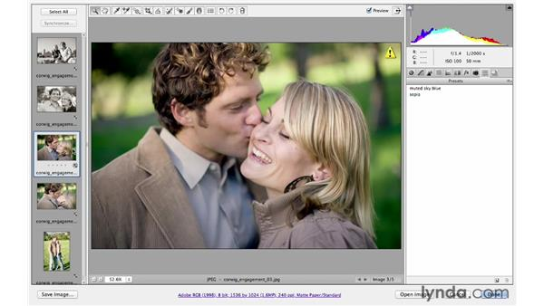 Introducing presets: Photoshop CS6 for Photographers: Camera Raw 7