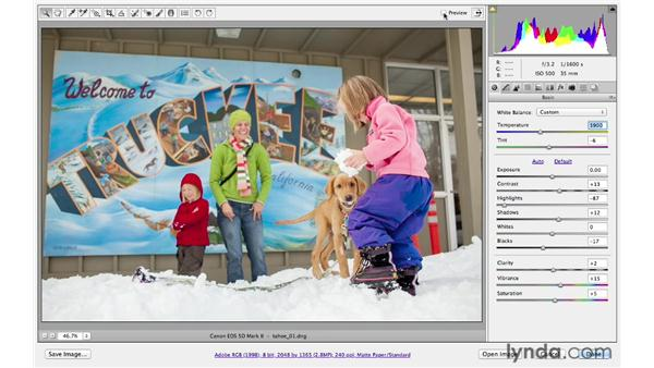 Applying raw processing in Bridge: Photoshop CS6 for Photographers: Camera Raw 7