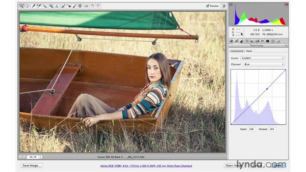 Using Camera Raw controls in a non-traditional way: Photoshop CS6 for Photographers: Camera Raw 7