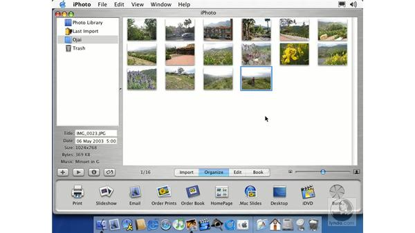 creating albums: Learning iLife: iTunes 4, iPhoto 2, iMovie 3 and iDVD 3