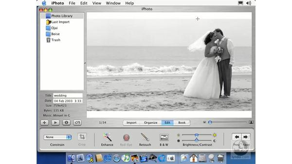 black & white, cropping: Learning iLife: iTunes 4, iPhoto 2, iMovie 3 and iDVD 3