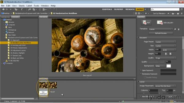 Working with a copy of the image: Nondestructive Exposure and Color Correction with Photoshop
