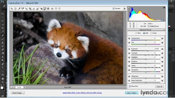 Performing selective adjustments: Nondestructive Exposure and Color Correction with Photoshop