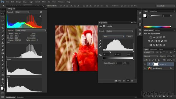 Reading the Histogram panel: Nondestructive Exposure and Color Correction with Photoshop
