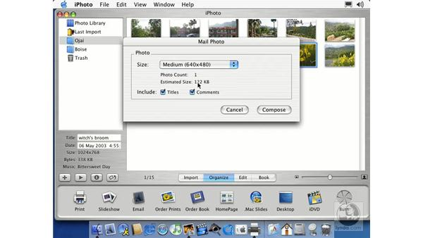 : Learning iLife: iTunes 4, iPhoto 2, iMovie 3 and iDVD 3