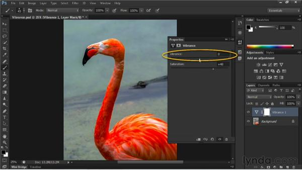 Boosting color with a Vibrance adjustment layer: Nondestructive Exposure and Color Correction with Photoshop