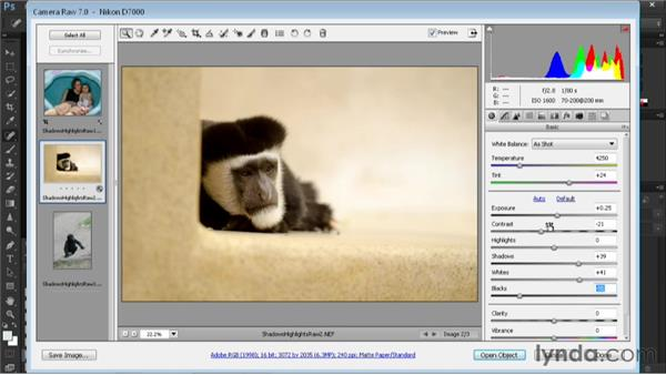 Adjusting shadows and highlights in a raw image: Nondestructive Exposure and Color Correction with Photoshop