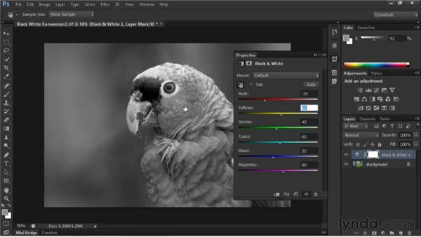 Creating black-and-white images: Nondestructive Exposure and Color Correction with Photoshop