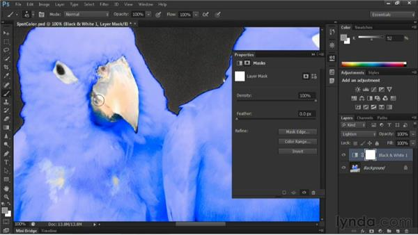 Hand-tinting a photo: Nondestructive Exposure and Color Correction with Photoshop