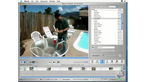 working with sound: Learning iLife: iTunes 4, iPhoto 2, iMovie 3 and iDVD 3
