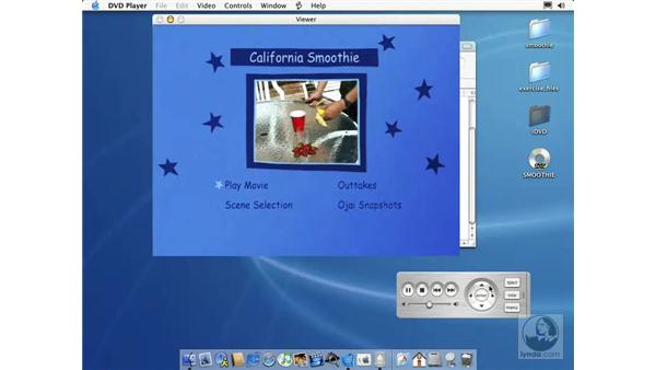 previewing and burning your DVD part two: Learning iLife: iTunes 4, iPhoto 2, iMovie 3 and iDVD 3