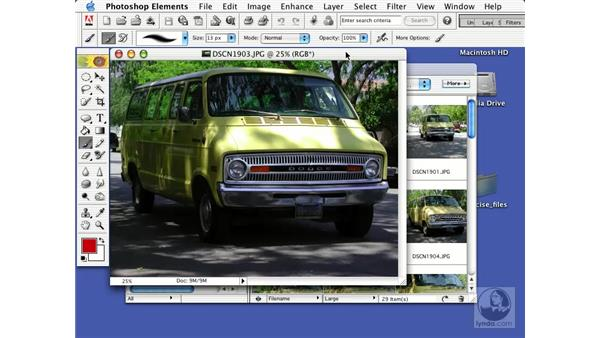 images from a digital camera: Learning Photoshop Elements 2