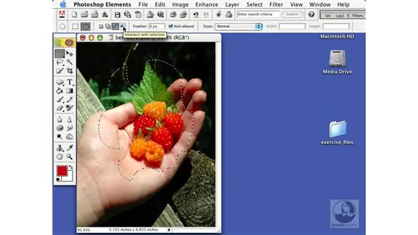 selecting with the marquee tools: Learning Photoshop Elements 2