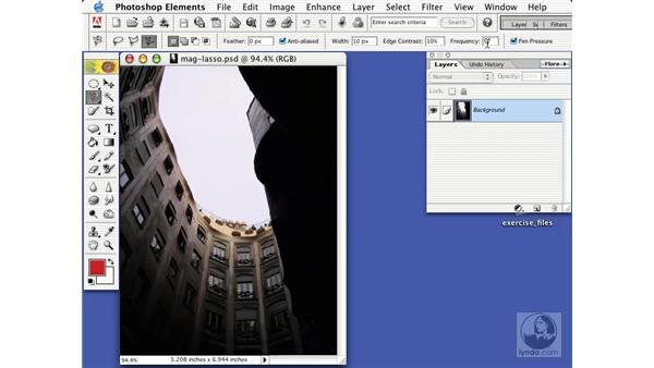 the magnetic lasso tool: Learning Photoshop Elements 2