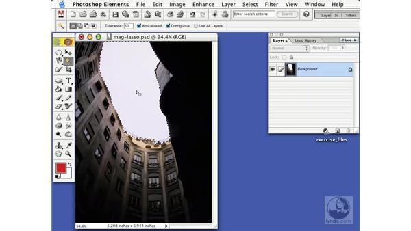 the magic wand: Learning Photoshop Elements 2
