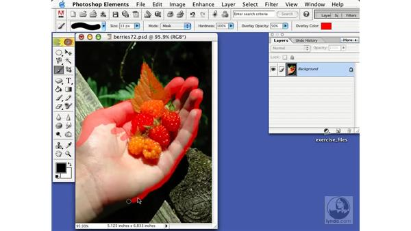 the selecting brush: Learning Photoshop Elements 2