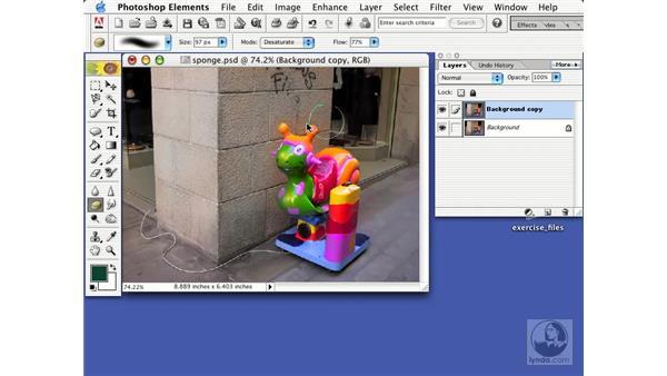 sponge tool: Learning Photoshop Elements 2