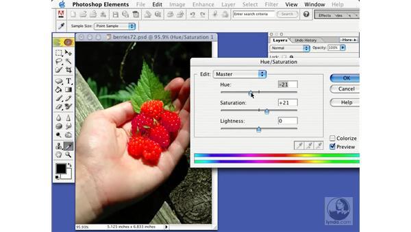 : Learning Photoshop Elements 2
