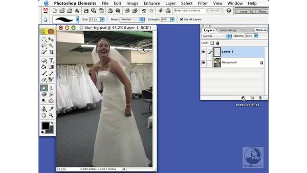 blurring the background: Learning Photoshop Elements 2