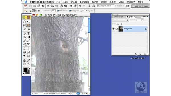 using paste into a selection: Learning Photoshop Elements 2