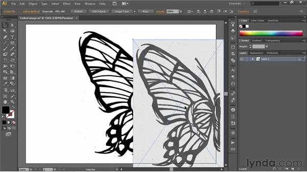 Auto-tracing and resolution: Illustrator CS6 One-on-One: Fundamentals