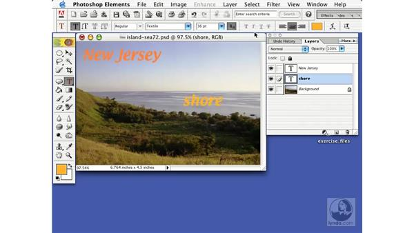 the type tools: Learning Photoshop Elements 2