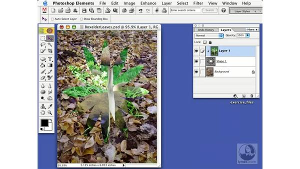 grouping layers: Learning Photoshop Elements 2