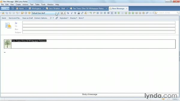 Formatting messages: Up and Running with Lotus Notes