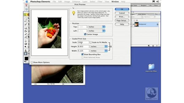 print preview: Learning Photoshop Elements 2