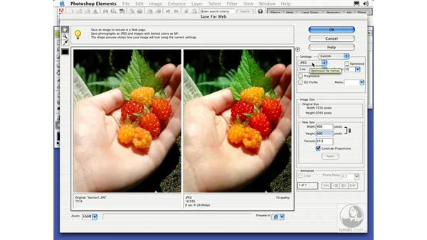 save for web: Learning Photoshop Elements 2