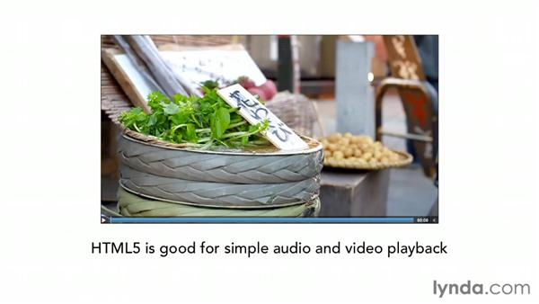 Looking at the future of web audio and video: HTML5 for Flash Developers