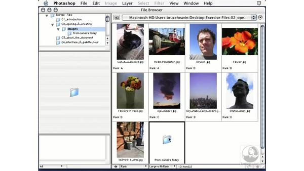 moving files: Learning Photoshop 7
