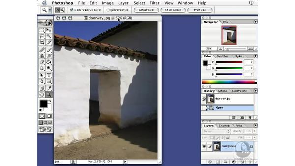 the zoom tool: Learning Photoshop 7