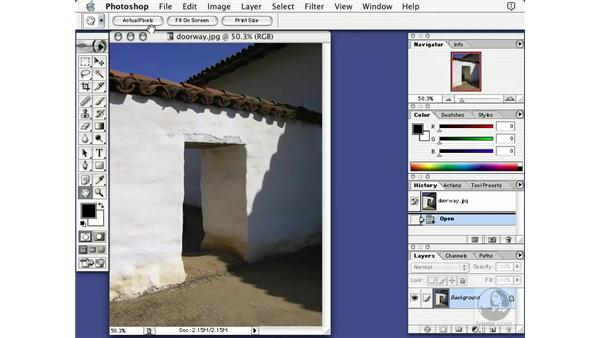 the hand tool: Learning Photoshop 7