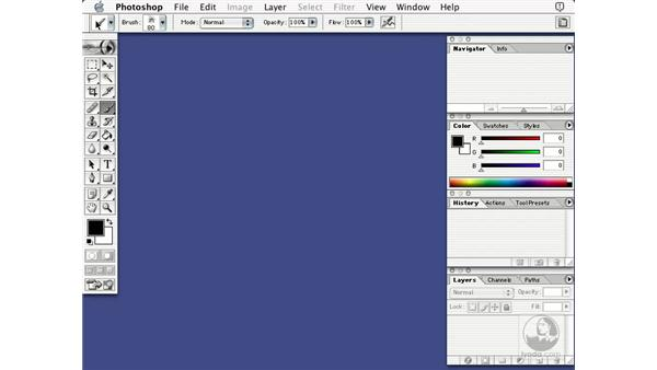 the tools palette: Learning Photoshop 7