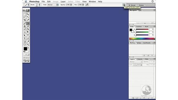 the option bar: Learning Photoshop 7