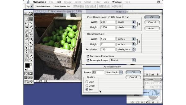 image size auto: Learning Photoshop 7
