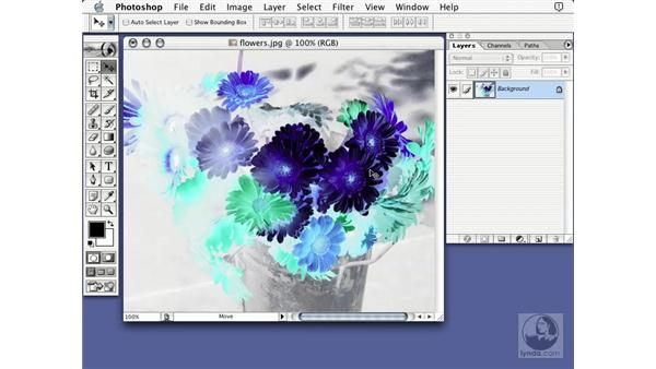 invert: Learning Photoshop 7