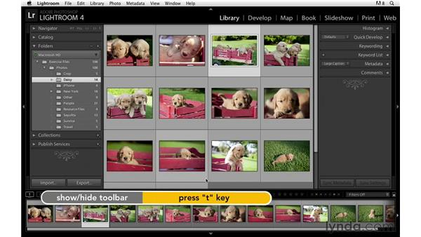 Working with the interface: Lightroom Power Shortcuts