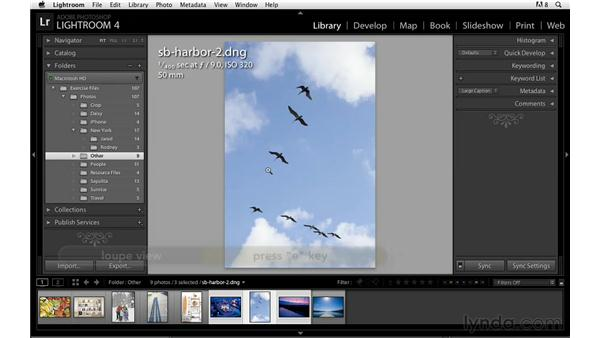 Renaming and relocating images: Lightroom Power Shortcuts