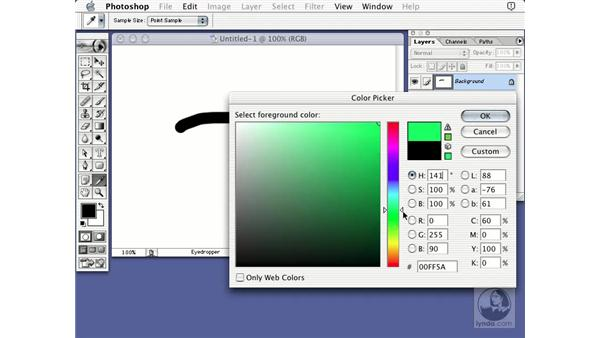 hue color picker: Learning Photoshop 7