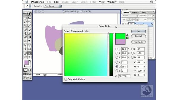 RGB color picker: Learning Photoshop 7