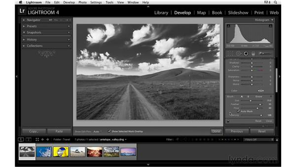 Making corrections with the Adjustment Brush: Lightroom Power Shortcuts