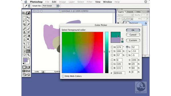 CMYK color picker: Learning Photoshop 7
