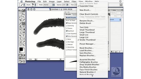 brush presets: Learning Photoshop 7