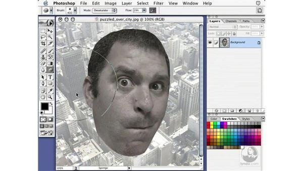 sponge tool: Learning Photoshop 7
