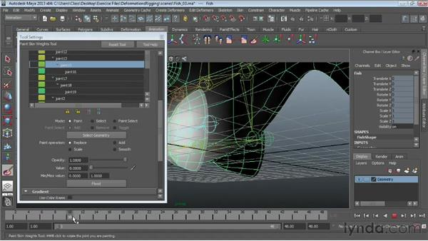 Painting skin weights: Maya Essentials 5: Animation Tools